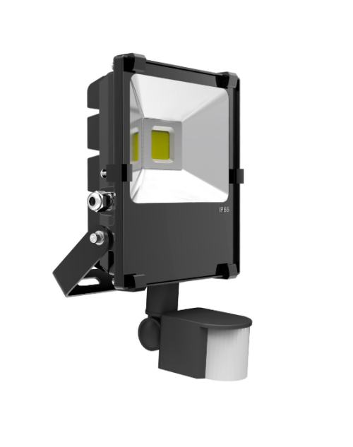 Outdoor 30W LED PIR Flood Light with Motion Sensor