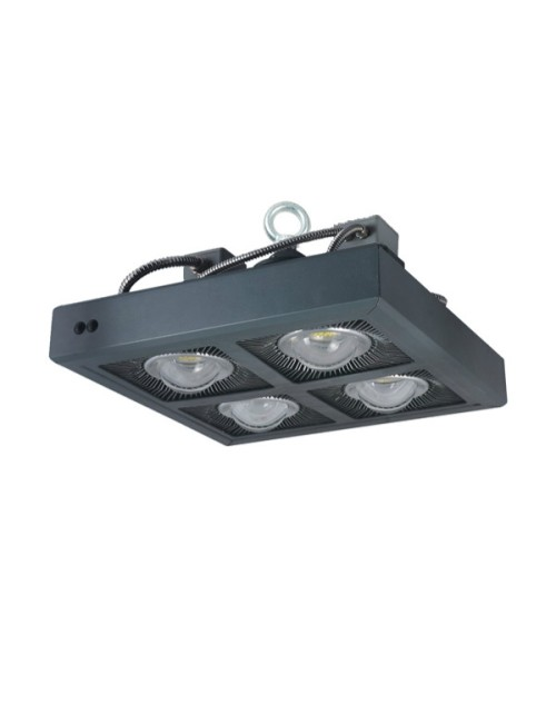 Golden supplier 5 years 240w high lumen ip65 led industrial light